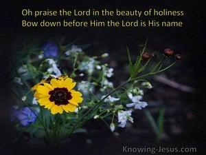 Joyful Thanks (devotional) (black) - Psalm 29:2