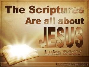 Luke 24:27 Top Priority (devotional)10:24  (beige)