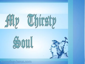 My Thirsty Soul (devotional) (blue) - Psalm 42:1
