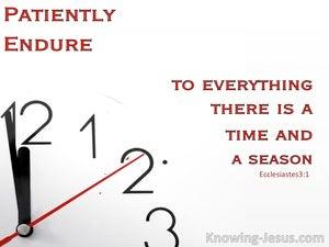 Patiently Endure (devotional) (white) - Ecclesiastes 3:1