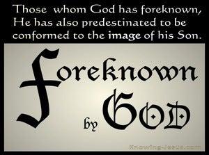 Romans 8:29 Foreknown of God  (devotional)12:01 (beige)