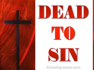 Dead To Sin (devotional) (white) - Romans 6:11