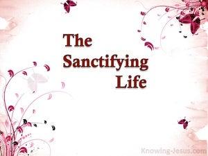 The Sanctifying Life (devotional) (pink) - Romans 8-29