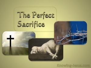 2 Corinthians 5:21 Sacrifice And Offering (devotional)01:09 (brown)