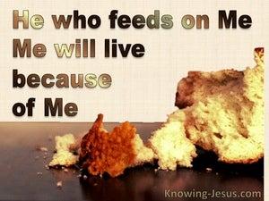 Spiritual Food (devotional) (brown) - John 6:57
