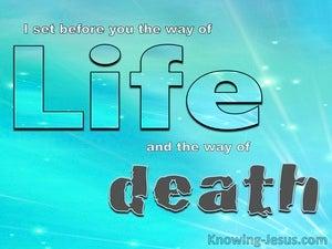 The Choice of Faith (devotional) (blue) - Deuteronomy 30:15