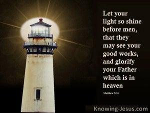 The Light Of The LORD (devotional) (brown) - Matthew 5:16
