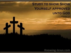 The Pivotal Cross (devotional) (brown) - 2 Timothy 2:15