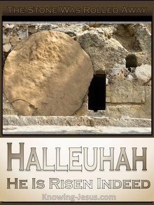 The Stone Was Rolled Away (devotional) (beige) - Luke 24:2
