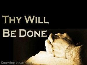 Luke 11-2 Thy Will Be Done (devotional)07-31 (brown)