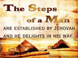 Timely Steps (devotional) (gold) - Psalm 37:23