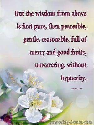 Words of Wisdom (devotional) (blue) - James 3:17
