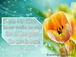 2 Corinthians 5:17 In Anyone Is In Christ The Old Creation Has Gone (windows)01:02