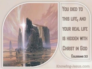 Colossians 3:3 Your Real Life Is Hidden With Christ In God (windows)01:20