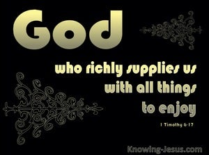 1 Timothy 6:17 God Supplies All Things (black)