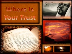 Where is Your Trust (devotional) - John 3:18