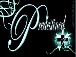 Predestined by God (devotional) - Romans 8:29