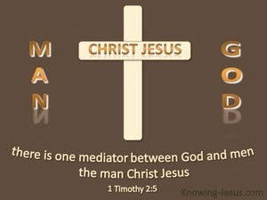 1 Timothy 2:5 One Mediator Between God And Men  brown
