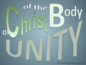 Unity Of The Body Of Christ (gray) Ephesians 4-12