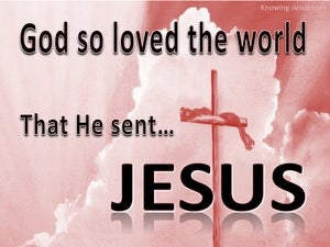 John 3:16 God So Loved The World pink