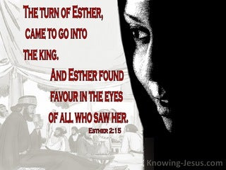 Esther 2:15 Esther Found Favor In The Eyes Of All Who Saw Her (red)