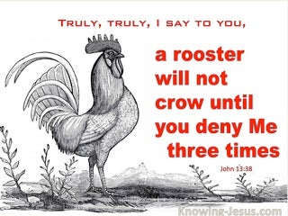 John 13:38 A Rooster Will Not Crow Until You Deny Me Three Times (red)