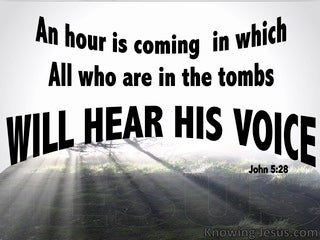 John 5:28 All In The Tombs WIll Hear His Voice (black)