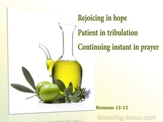 Romans 12:12 Rejoicing In Hope, Persevering In Tribulation, Devoted To Prayer (sage)