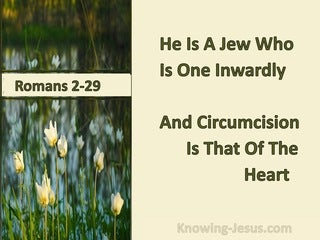 Romans 2:29 He Is A Jew Who Is One Inwardly; And Circumcision Is That Of The Heart (cream)