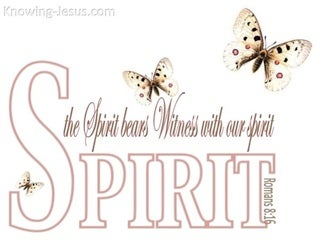 Romans 8:16 TheThe Spirit Bears Witness (white)