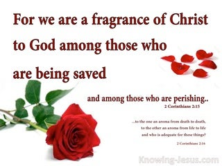 2 Corinthians 2:15 The Fragrance Of Christ To Those Who Are Saved (red)