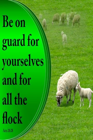 Acts 20:28 Be On Your Guard (green)