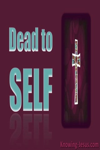 Dead to Self (devotional) (maroon) - Romans 6:11