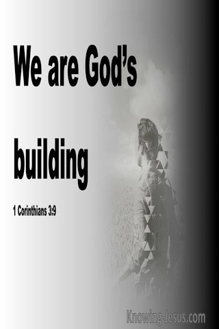 1 Corinthians 3:9 We Are God's Building (black)