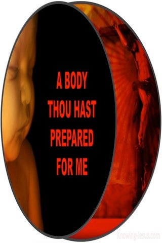 Hebrews 10:5 A Body You Have Prepared (red)