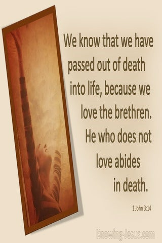 1 John 3:14 He Who Does Not Love Abides In Death (brown)