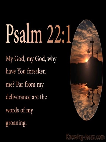 Psalm 22:1 My God  My God  Why Have You Forsaken Me (pink)
