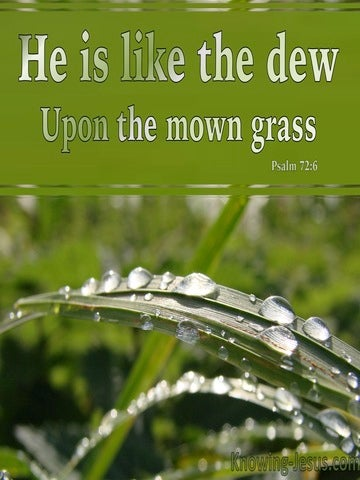 Psalm 72:6 He Is Like The Dew On The Mown Grass (green)