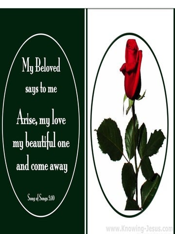 Song of Solomon 2-10 Arise My Love And Come Away (green)