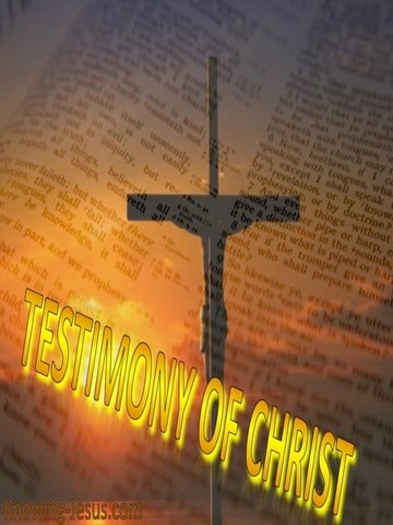 John 5:39 The Scriptures Testify About Me (yellow)
