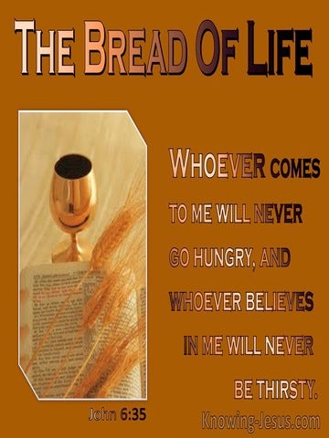 John 6:35 I am the bread of life (orange)