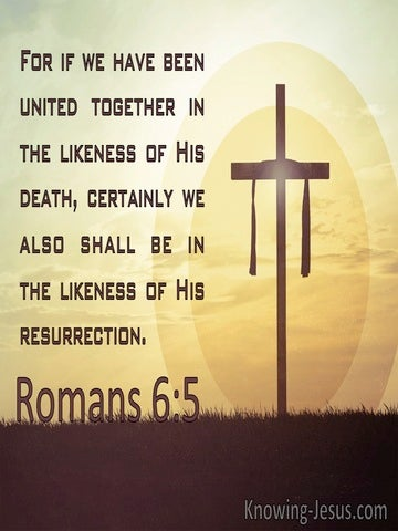 Romans 6:5 United With Christ In The Likeness Of His Death (brown)