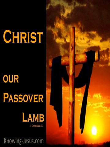 1 Corinthians 5:7 Christ Our Passover (orange)
