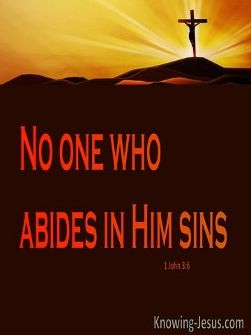 1 John 3:6 No One Who Abide In Him Sins (red)