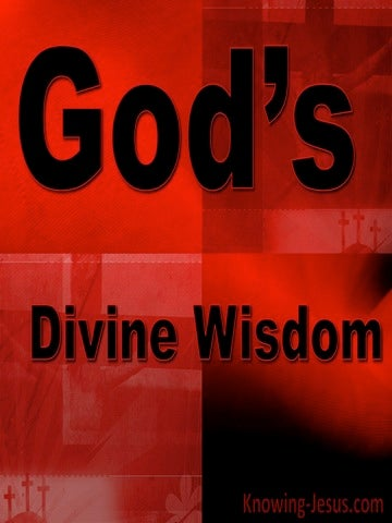God's Divine Wisdom (devotional)06-26 (black)