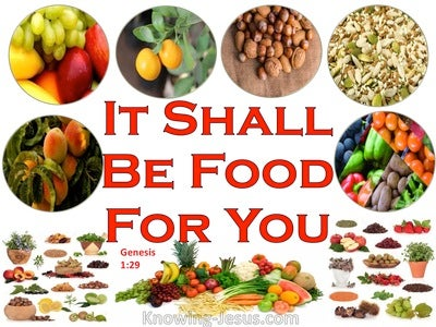 Genesis 1:29 It Shall Be Food For You (red)