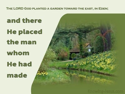 Genesis 2:8 The LORD God Planted A Garden Toward The East bible (green)
