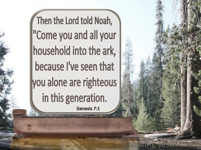 Genesis 7:1 Come Into The Ark Noah : You And Your Family (brown)