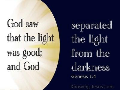 Genesis 1:4 God Saw The Light Was Good (navy)