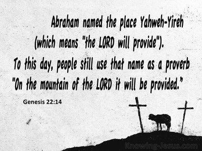Genesis 22:14 The Lord Will Provide (white)